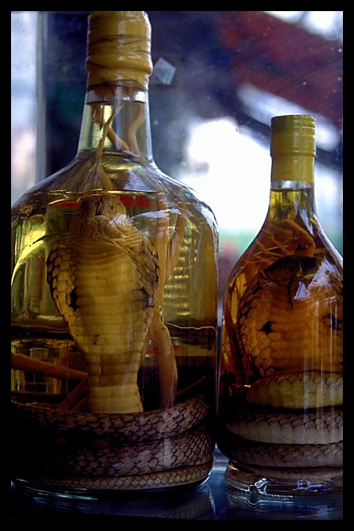 Snake-bottle-45.3