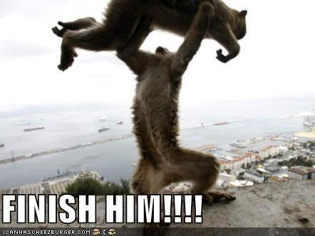Mortal-kombat-monkeys