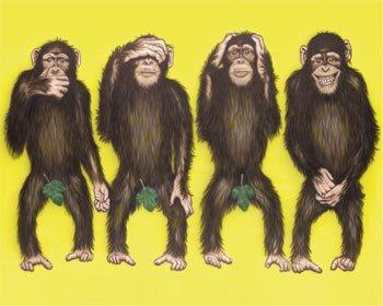 Monkeyfour